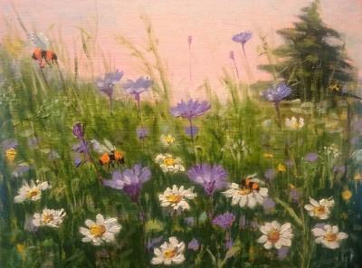 kimalane maamesilane suvi lilled õlimaal keiu kuresaar karikakrad rukililled maastik