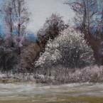 pastel painting landscape maastik pastellmaal Valingu Aila Jõgisoo küla kevadine pajupõõsas Keiu Kuresaar