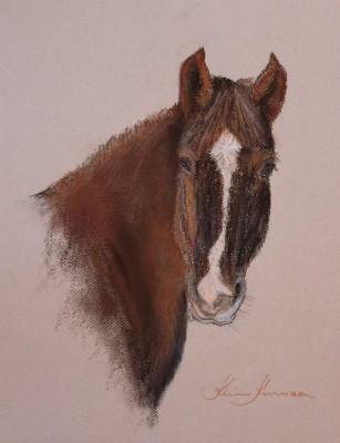 Hobune Eera portree pastellmaal pastel painting Keiu Kuresaar