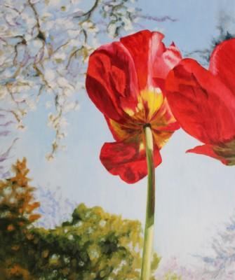 õlimaal oil painting lill floral tulip tulp Keiu Kuresaar